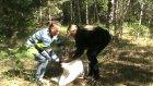 В Пензе спасли очередную заблудившуюся косулю