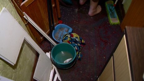 заливает квартиру канализацией