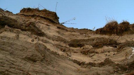 незаконная добыча песка уголовная ответственность