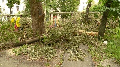 Детская площадка на улице Гладкова утонула в спиленных ветках