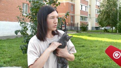 Пензячка за два года пристроила около 300 собак и кошек