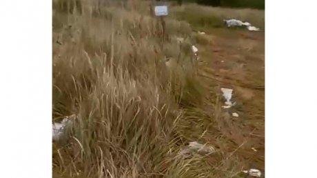 Новую часть Восточного кладбища заносит мусором со свалки