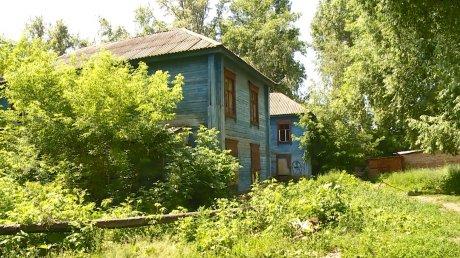 На улице Карпинского место снесенного дома заняли заросли