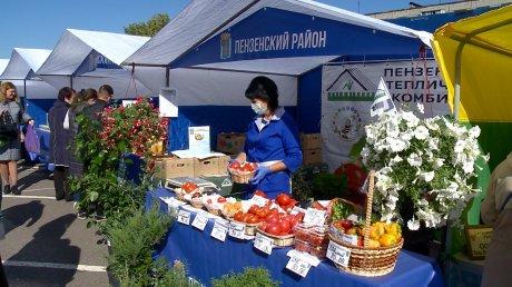Пензенцы по достоинству оценили ярмарку местных товаров