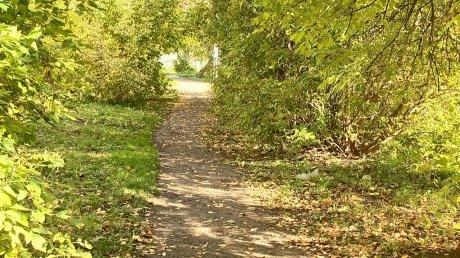 Коммунальщикам удалось скосить траву на улице Островского