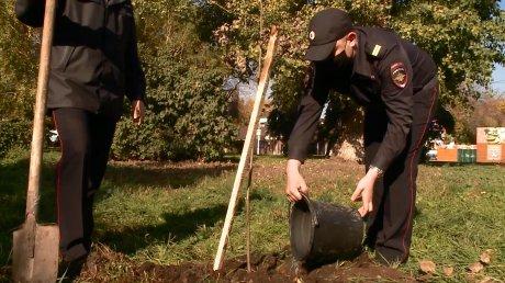 Полицейские высадили деревья у железнодорожного вокзала Пензы