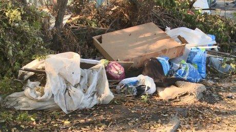 Контейнерная площадка в Арбекове стала проблемой местных жителей